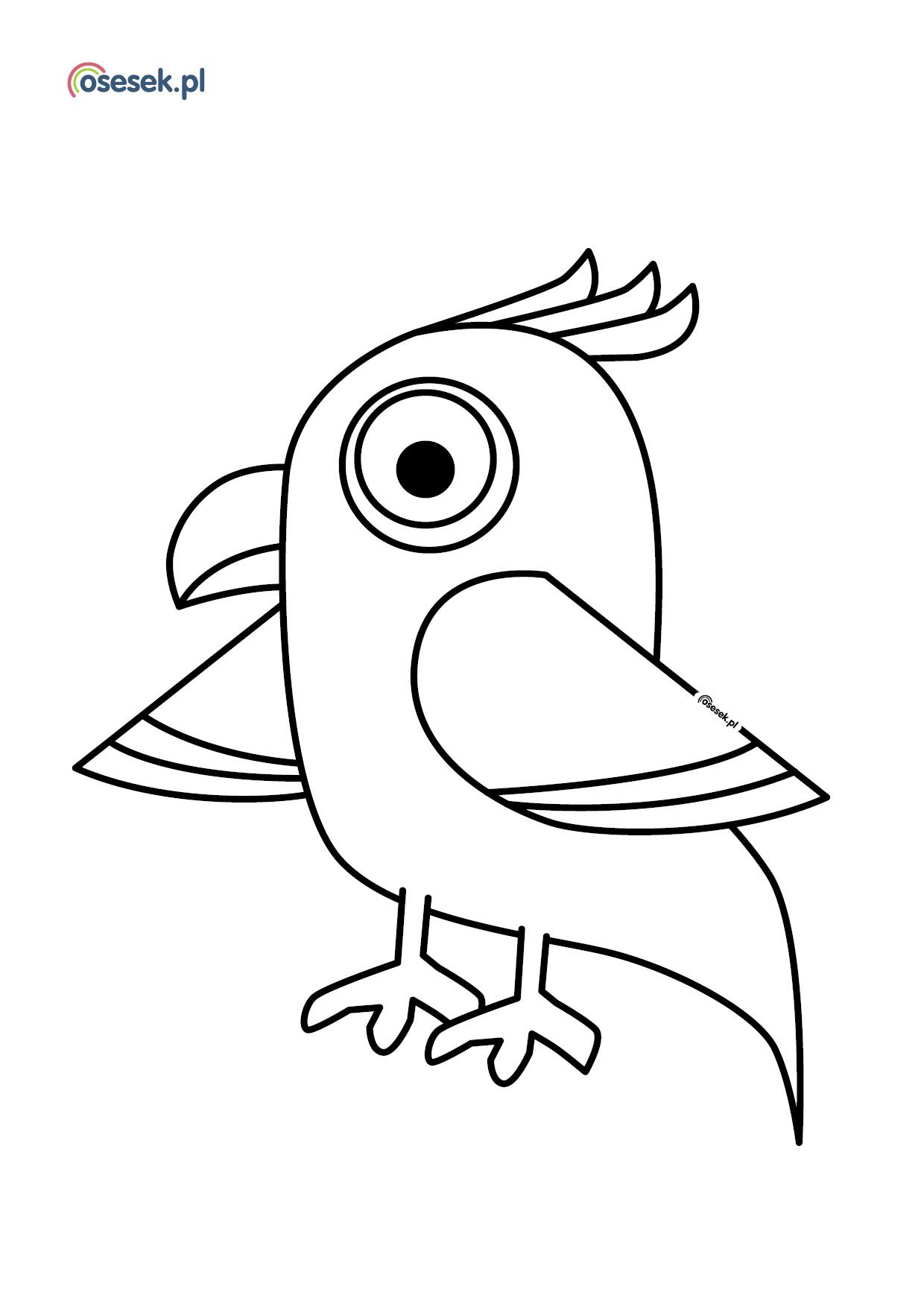 Papuga Arabella Kolorowanka Dla Dzieci Do Druku Osesek