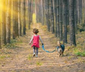 7 ciekawych miejsc na wypoczynek w lesie