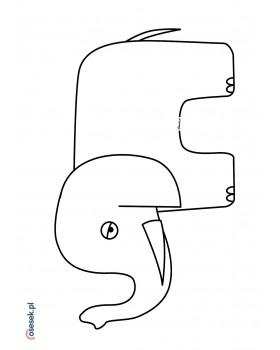 Słonik Dominik