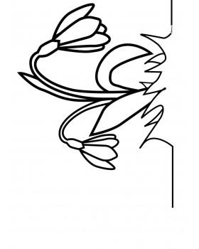 Kwiatki dzwoneczki