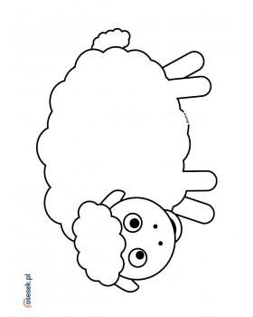 Owca Zuzanna