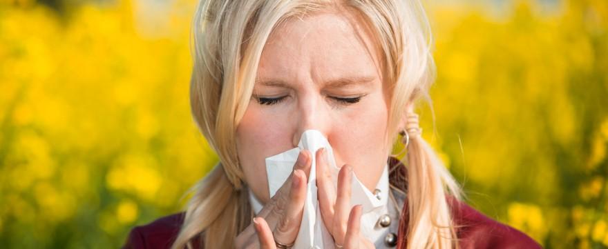 alergia zmora naszych czasów