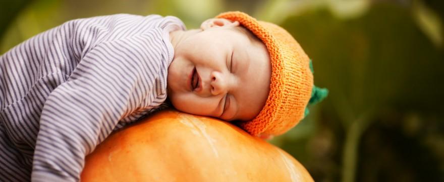 dynia w diecie niemowlaka