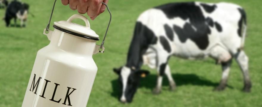 dzieci tolerują mleko po podgrzaniu