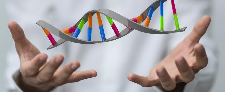 gen regulujący płodność
