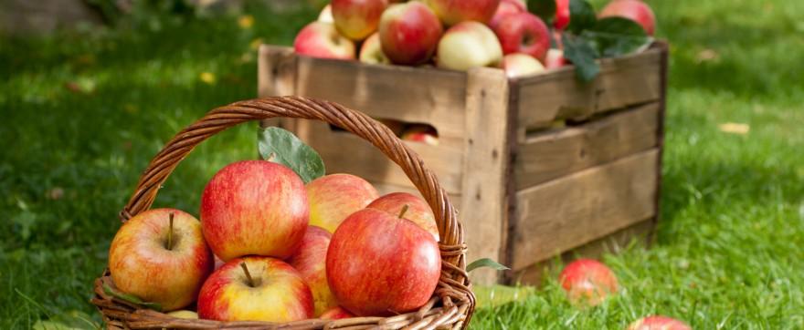 jabłkowe pierożki
