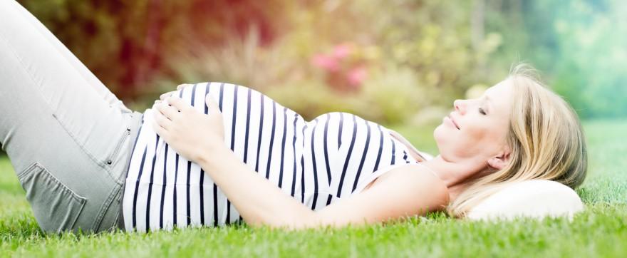 paciorkowiec ciąża