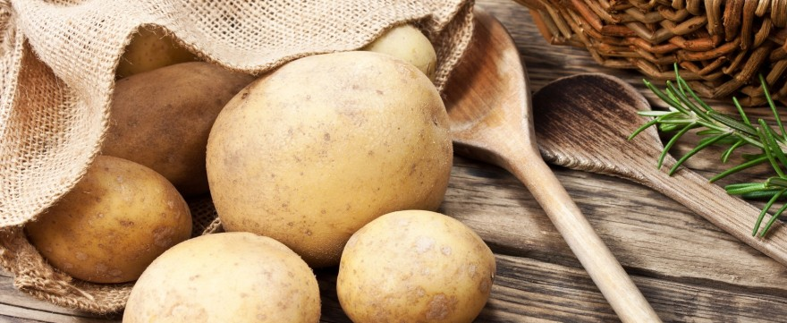 papka z ziemniaka dla niemowlaka