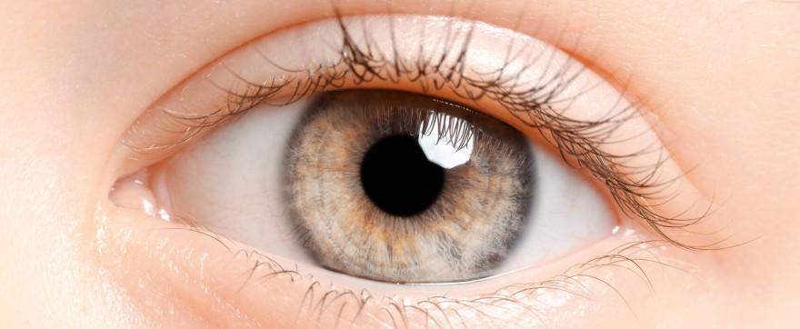 dwukolorowe oczy u dziecka