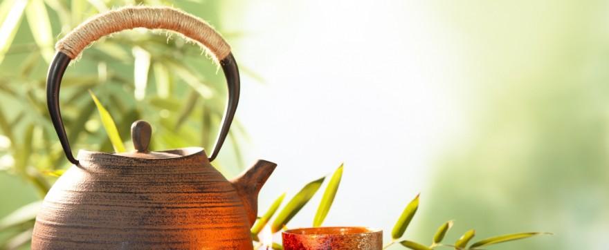 zielona herbata na sepsę