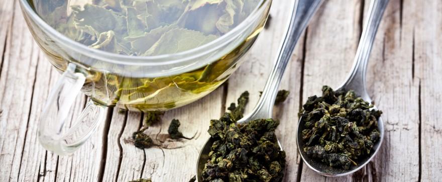 zielona herbata zwalcza bakterie