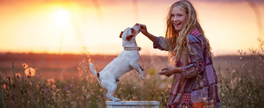 zwierzęta domowe dla dziecka