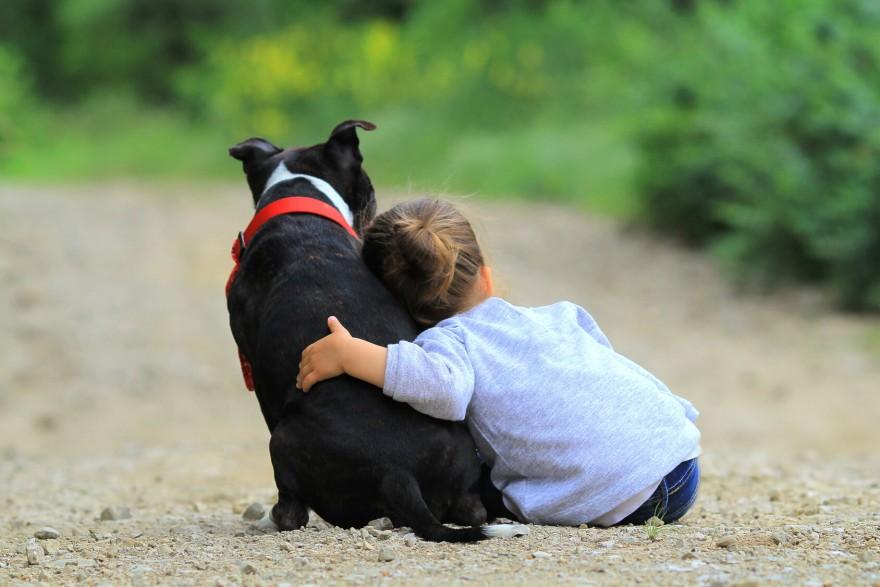 hipoterapia i dogoterapia dla dzieci