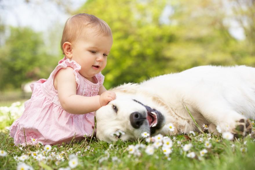 empatia u dzieci